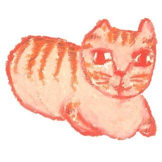 喵窩 Meow Wo