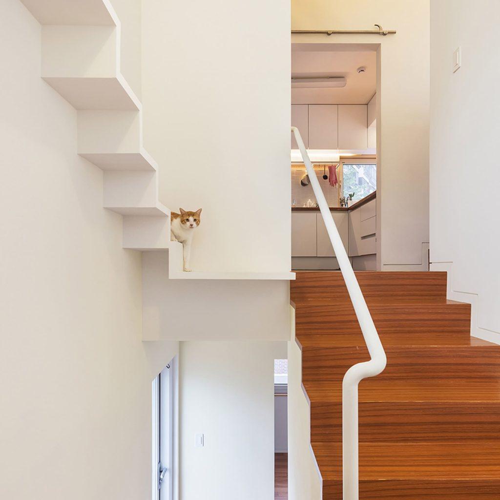 貓咪友善空間