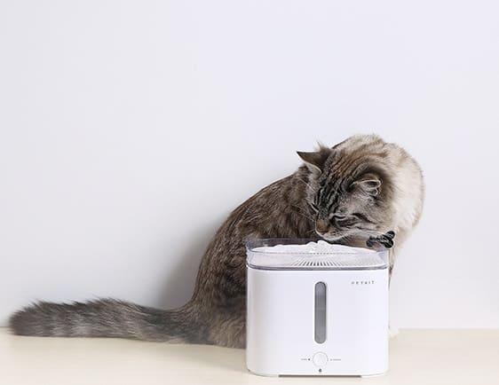 Petkit 第二代智能寵物循環活水機W2