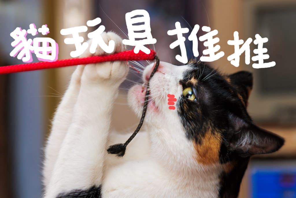 十大貓玩具推薦評比[2020年最新版]