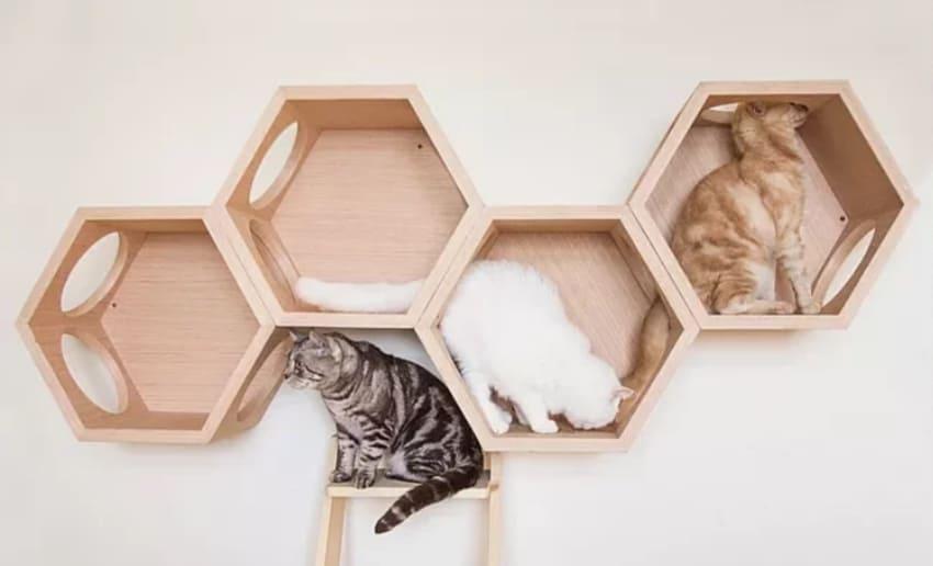 Myzoo 六角貓跳台
