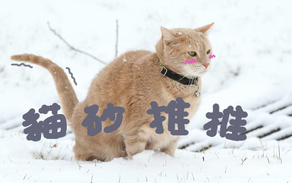 十五大貓砂推薦評比