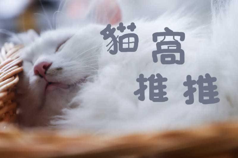夏天十大貓窩推薦評比,讓你的主子透心涼~[2021年最新版]