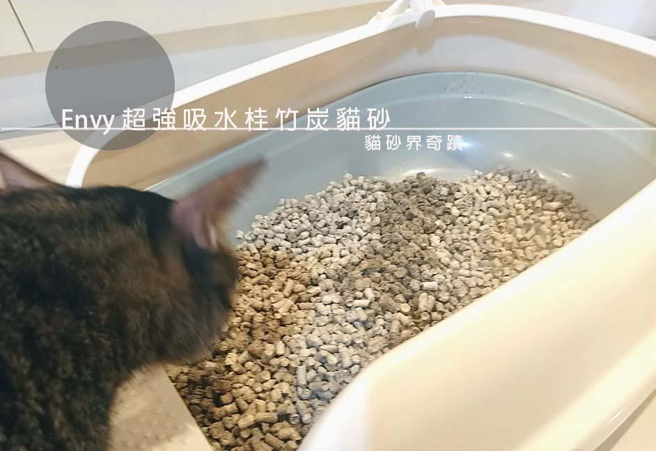 ENVY貓砂封面照